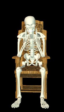 skeleton-1827270_1920